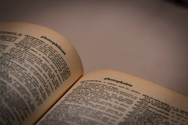 Photography of a Dictionary